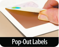 [Pop-Out Labels]